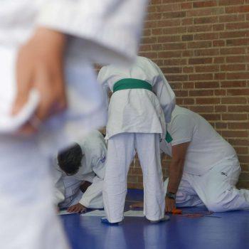 judo-1-Copy